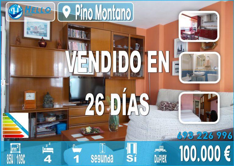 Cartel Oficina Pino Montano Polar